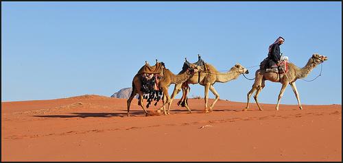 Beduinos 1